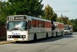 Wulff Bus 164