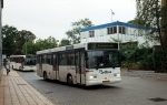 Wulff Bus 6426