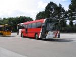 Pan Bus 262