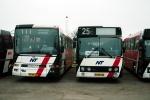 Pan Bus 239 og 234