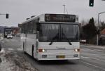 Rougsø Buslinier 13