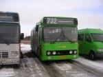 Wulff Bus 3115