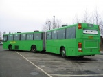 Wulff Bus 2701