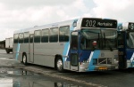 DSB 8009