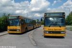 ÅS 311 og 313