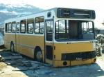 Ex. Nuup Bussii 15