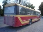 Tapa Buss