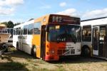 Brande Buslinier 035