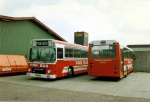 Pan Bus 156 og 114