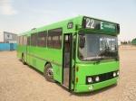 Wulff Bus 3177
