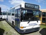 Papuga Bus 41