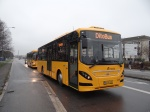 Ditobus 4787
