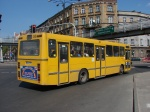 Transgor 348