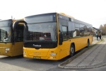 NF Turistbusser 60