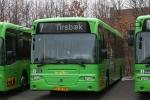 Wulff Bus 1029