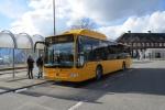 Tide Bus 8741