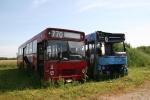 Wulff Bus 2167 og 249