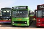 Wulff Bus 3150