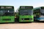 Wulff Bus