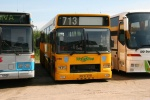 Wulff Bus 3166