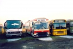 Ketty og Villys Buslinier