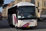 Papuga Bus 38