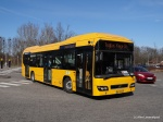 Lokalbus 4002