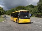 De Hvide Busser 8716