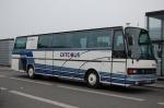 Ditobus 317
