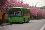 Wulff Bus 3288