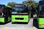 Mana Coach Services 69