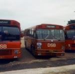 DSB 213
