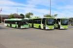 Bergholdt 5332, Tide Bus 8322 og 8319