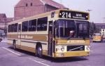 De Gule Busser 133