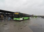 Tide Bus 4056