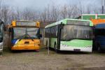 Busselskabet Pletten og Bergholdt 5336