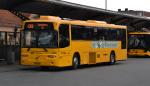 Ditobus 4666