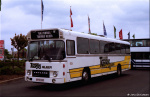 Tigerbus Rejser 10